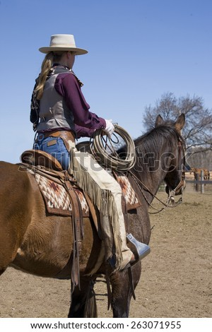 Cowgirl holding rope looking at cattle herd on horseback - stock photo