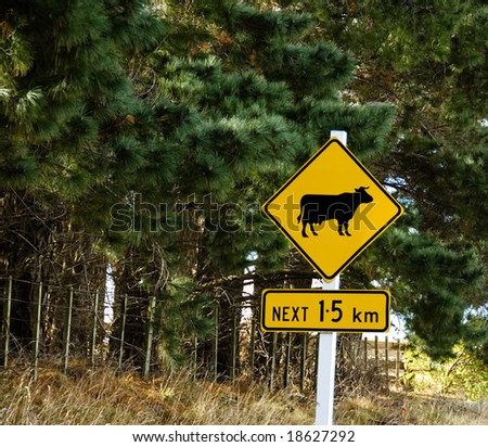 Cows Ahead Traffic Warning Sign - stock photo