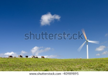 Cows grazing in green meadow next to a wind turbine, alternative energy, electricity generation; long exposure, motion blur on the blades - stock photo