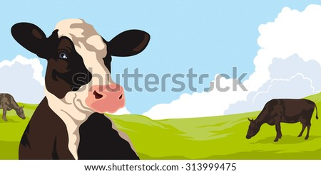 Cows on a background of nature - stock photo