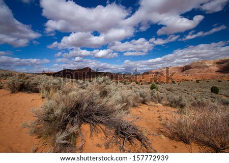 Coyote Buttes - stock photo