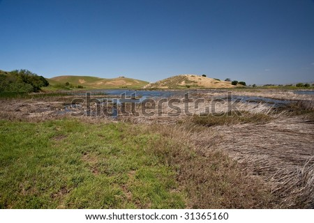 Coyote Hills Regional Park is a regional park administered by the East Bay Regional Park District. The park is located in Fremont, California, on the southeast shore of the San Francisco Bay. - stock photo