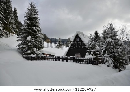 Cozy cottage next to the forest - stock photo