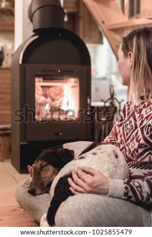 Cozy home interior with fireplace and dog