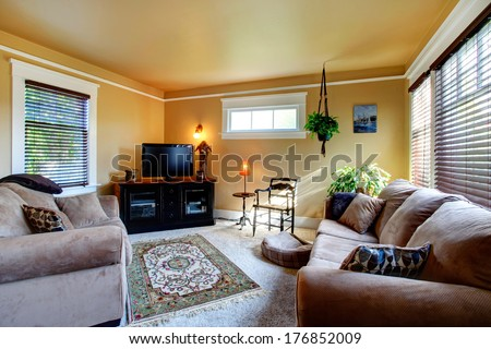 Cozy living room with carpet floor, rustic rug. Furnished with soft couches, antique wooden chair and black cabinet with tv. Decorate with hanging planter. - stock photo