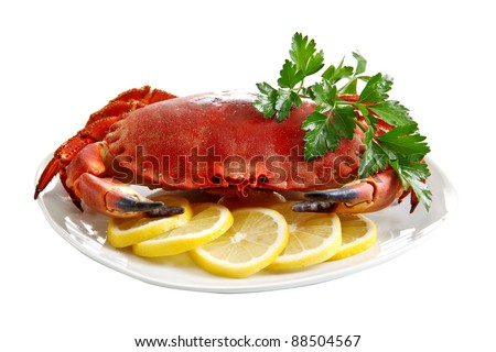 Crab  on a platter - stock photo