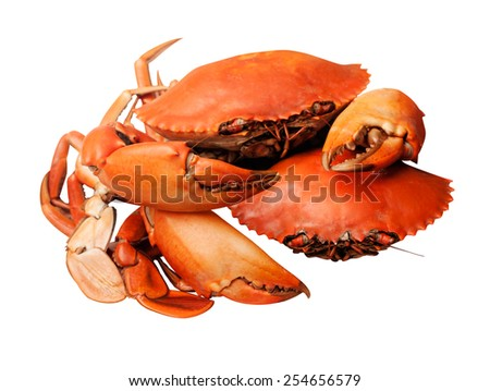 crab roasted isolated on white with working path - stock photo