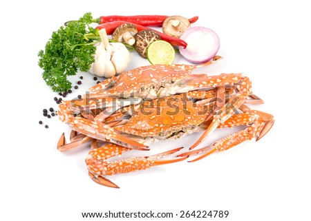 Crab steamed with vegetables on white background. - stock photo