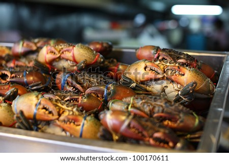 crabs prepare to cook, sorry but eat ! - stock photo