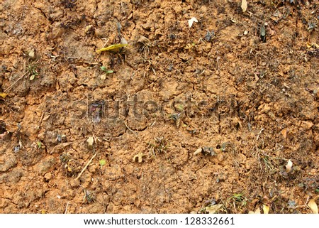 Crack soil on dry season, Global worming effect. - stock photo