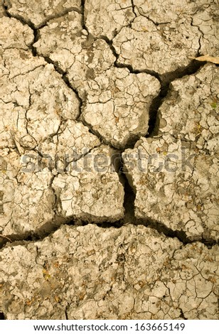 Cracked arid soil close up