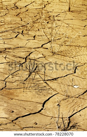Cracked  desert  soil  disaster