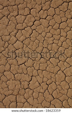 Cracked desert surface background - stock photo