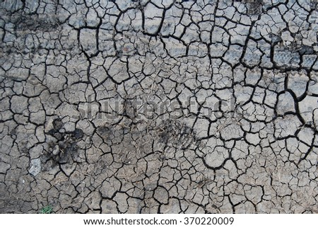 Cracked dry earth. A series of textures found on the streets of Havana, Cuba.