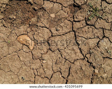 Cracked dry land by water shortage - stock photo