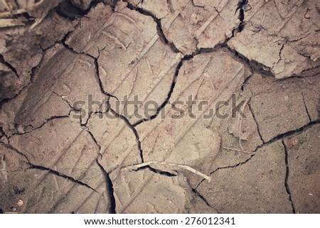Cracked dry soil - stock photo