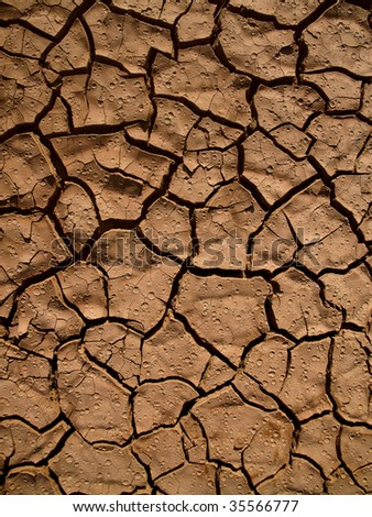 Cracked earth after drought