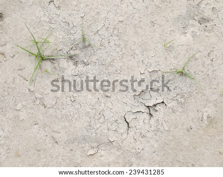 Cracked Earth and green grass. Dried Ground Texture - stock photo