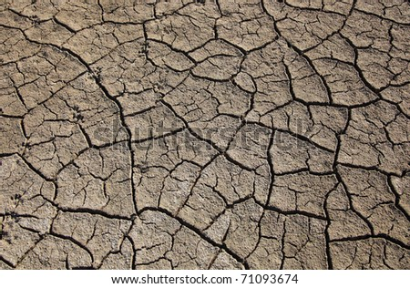 Cracked Earth. Dry land - stock photo