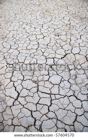 Cracked earth in dry desert - stock photo