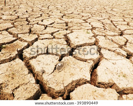 Cracked earth landscape, The concept cracked soil drought.