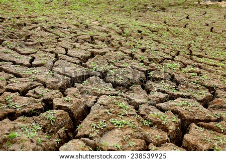 cracked earth ,reservoir dry up - stock photo