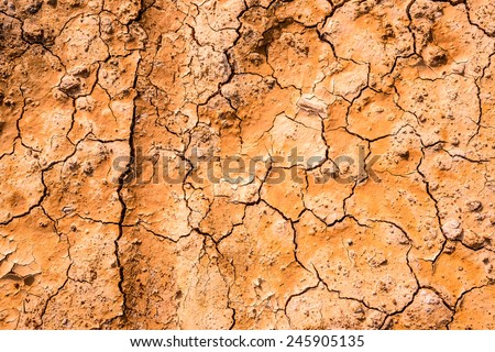 Cracked earth texture  - stock photo