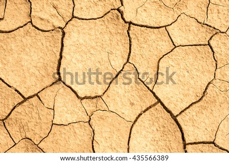 cracked earth texture. cracked soil with sun light