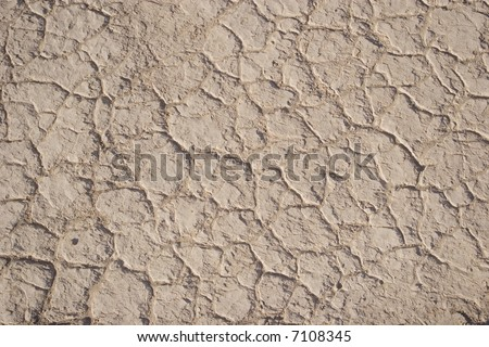 Cracked earth texture or background - stock photo