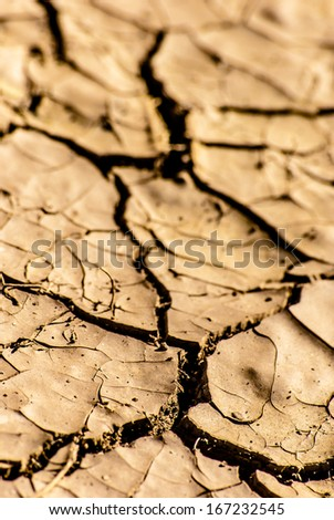 Cracked lifeless soil drying under ardent sun, macro