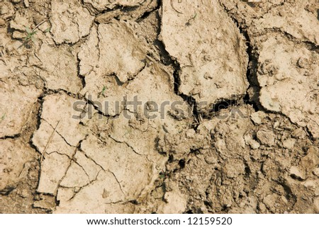 cracked mud - stock photo