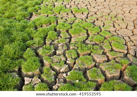 cracked mud from drought with grass - stock photo