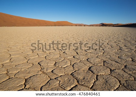 Cracked salt and clay pan in Dead Vlei
