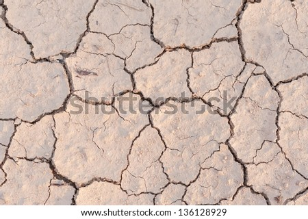 cracked soil - stock photo