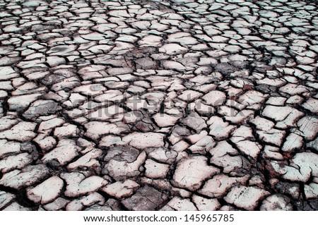 cracked soil. - stock photo