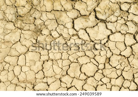 cracked soil dry earth texture,background - stock photo