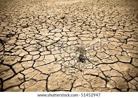 Cracked soil of desert - stock photo