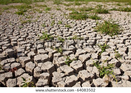 Cracked soil pattern - stock photo