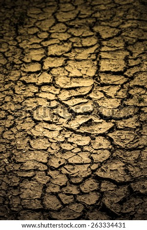 cracked soil. Shallow depth of field. vertical shot. - stock photo