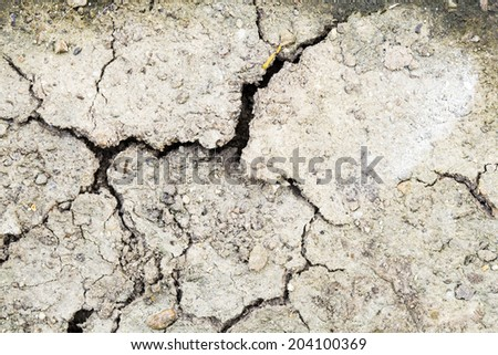 Cracked soil - texture and background