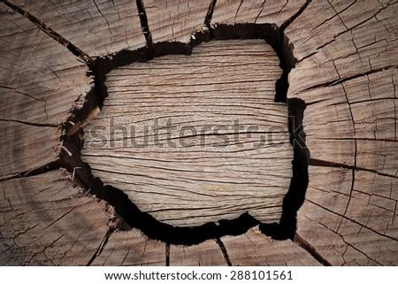 Cracked wood background - stock photo