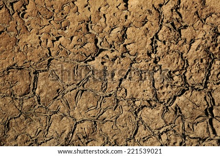 cracking dried land - stock photo