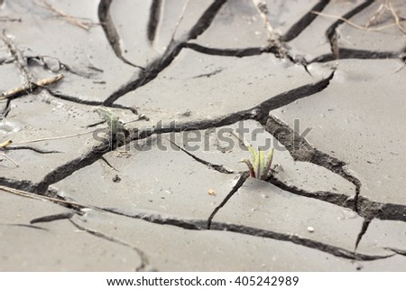 cracks in the land of drought - stock photo