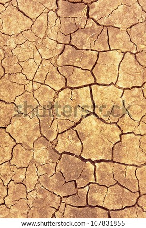 Cracks on dry surface of the ground