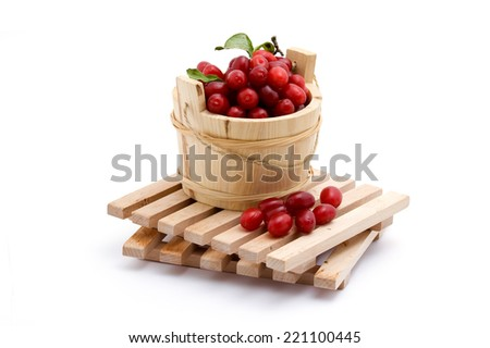 cranberries - stock photo