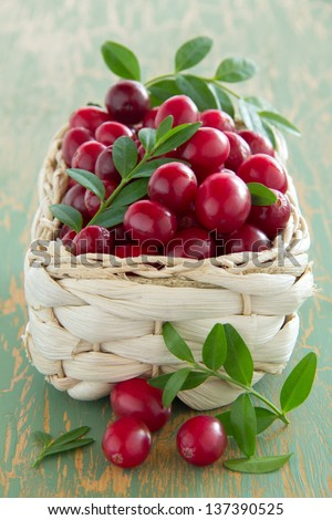 cranberries in a basket. - stock photo
