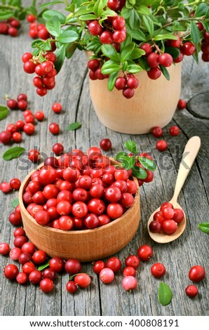 Cranberries  in wooden bowl on rustic table - stock photo