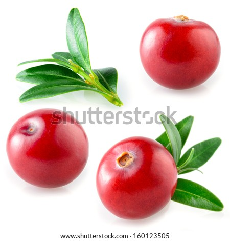 Cranberries isolated. Collection on white - stock photo