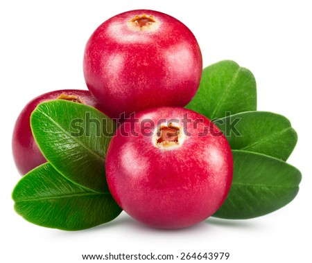 cranberries isolated on white  - stock photo