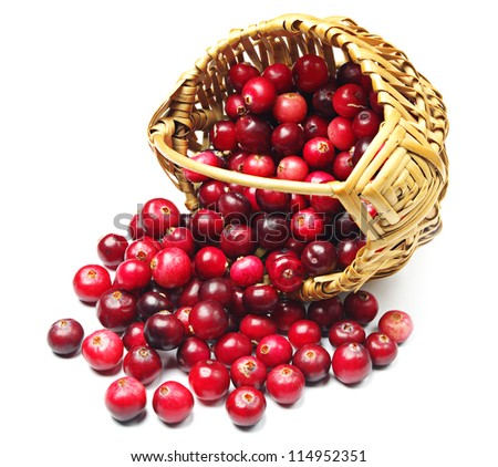 Cranberries near the basket on white - stock photo